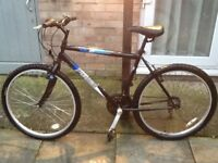 £40 nice bike all working 26 wheel20 frame 18 gears can deliver for petrol cost £40