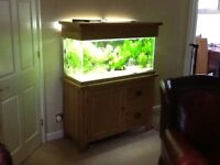 FISH TANK AND CABINET - OAK