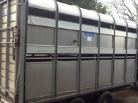 Cattle Trailer....Ifor Williams. 12 X. 6