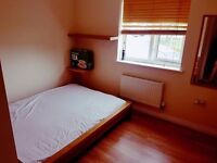 DOUBLE ROOM CANADA WATER!!! VERY CHEAP ! ASAP !