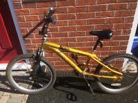 """Magna 22"""" Furious BMX Bike"""