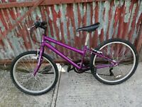 Klondyke Purple Bike for sale would suit 5 - 9 Year old £30 Dungannon (Tyre size 24 inch) £30