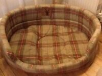 Stag dogs bed used couple times .