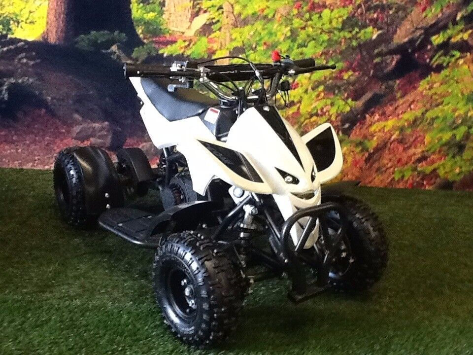 49cc kids quad - mini assassin