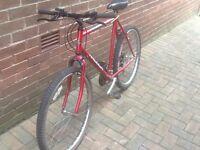 Raleigh Firefly Mountain bike
