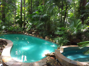 TROPPO HOME. ACRE OF RAINFOREST. Coconut Grove  / Coconut Grove Darwin City Preview