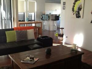 Professional female wanted to share a beautiful home with another Biggera Waters Gold Coast City Preview