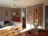 Double room available in modern and airy flat