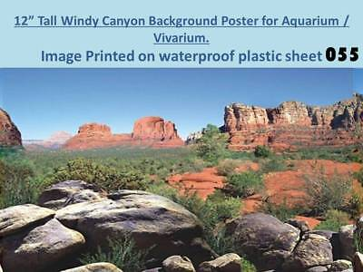 "12"" Tall Windy Canyon Background on Plastic Poster for Aquarium / Vivarium 055"