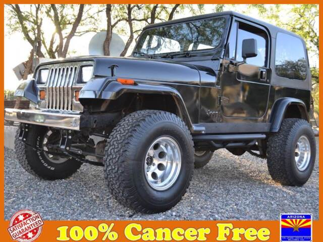 Jeep : Wrangler 2dr SE Lifted Wrangler YJ Hardtop Offroad Arizona trail Jeep Black Chrome Clean
