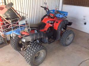 Ag quad 250cc Paskeville Copper Coast Preview