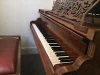 Piano lessons/tuition/teacher. Norwich City Centre. All ages/abilities/experience