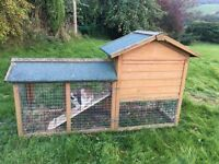 Large double story rabbit hutch