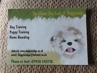 NEED A DOG TRAINER? THE CLEVER DOG TRAINING @ DOGGIELODGE TRAINER