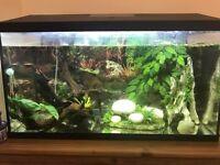 105l aquael tank