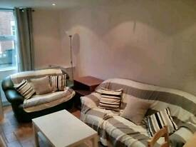 Room to Rent, Donegall Road