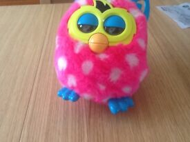 Spotted furby