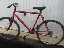 Mens Moutain bike ( project ) never finished bargain