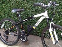Reebok thunder child's mountain bike