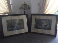 Two large deer prints