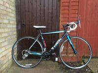 Trek 1.1 Road Bike 2013, 54cm frame, excellent condition