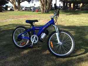 PK 150 kids mountain bike,Giant MTX 150 style Croydon Park Canterbury Area Preview