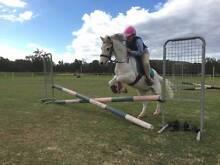 Part Lease; Slow and quiet kids pony Karragullen Armadale Area Preview