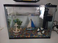 Tropical fish tank 19L