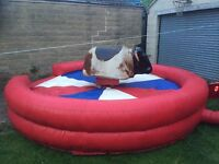 Rodeo Bull Hire In Yorkshire