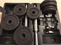 Dumbbells YORK