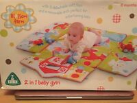 2 in 1 baby gym