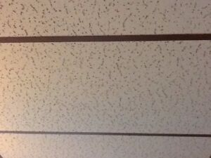Ceiling tiles and metal tracking