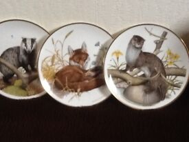 WIldlife Plate collection