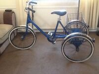 Pashley adult tricycle trike