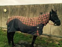 Horse rug 6f6 new zeland with neck rug