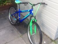Beautiful lady/s bike£45 can deliver for petrol