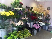 Flower Shop / Florist for Sale Shropshire