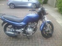 CHEAP SYM xs125k 2009 BLUE