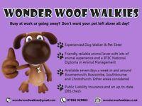 Wonder Woof Walkies Dog Walking & Pet Care-Bournemouth