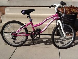 Girls kids bicycle 20""