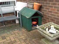 Dog box no door colour green very heavy