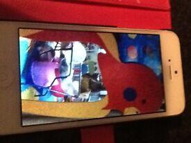 Large mirror colourful parrot excellent condition