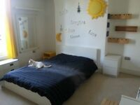 Nice Spacious and Quiet Double rooms on Park Ave.