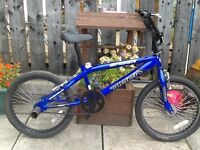 BMX tiger spider bike boys/ youths £40