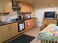 Two double rooms in residential area right next to tube