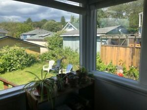 Room for rent in Quadra Village - available FEB 1st!