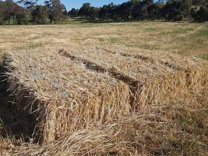 Meadow Hay Normanville Yankalilla Area Preview