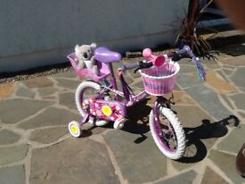 Little girls bicycle