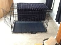 Collapsible two door dog crate with retractable tray.