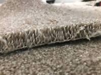 Carpet fitter and vinyl flooring